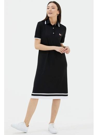 Sementa Polo Yaka Pike Elbise   Siyah